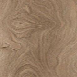 Ламинат Floorwood Active Дуб Касл Светлый, , 933 руб. , 1004-01, Floorwood, Active
